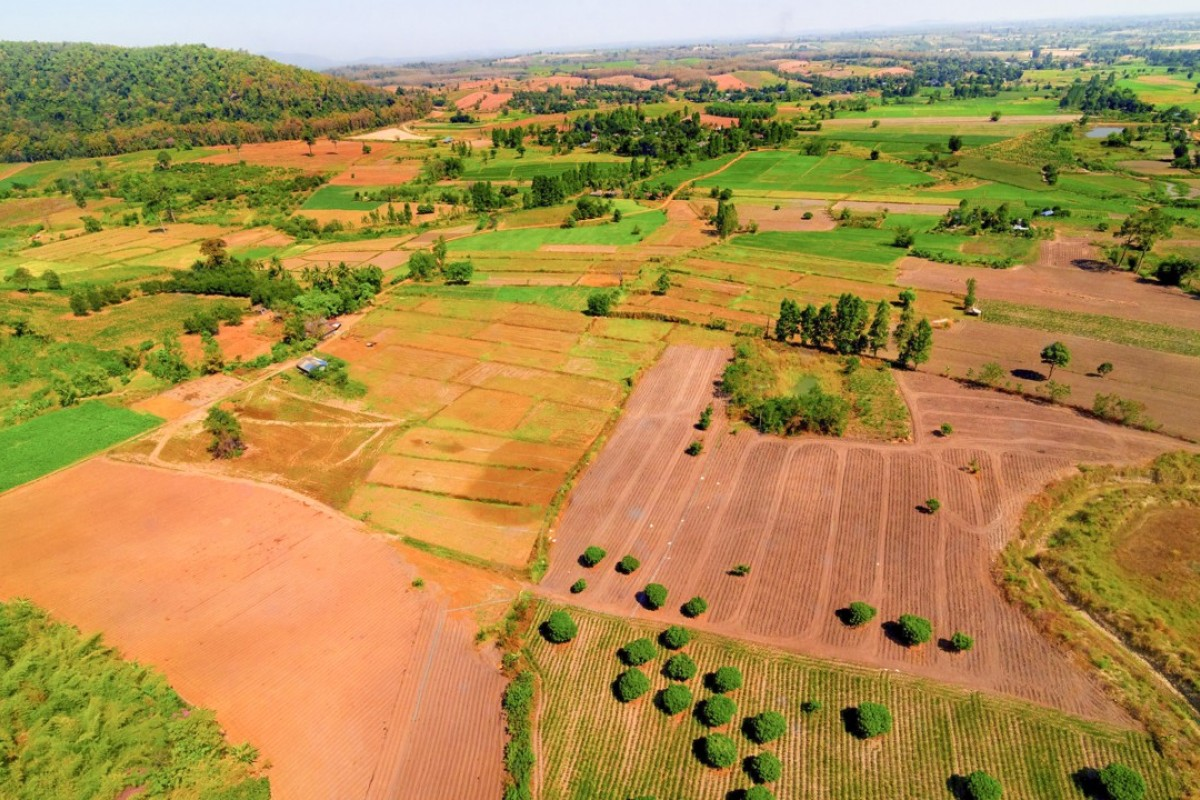 Forests converted into farmland in Thailand. Picture: Alamy