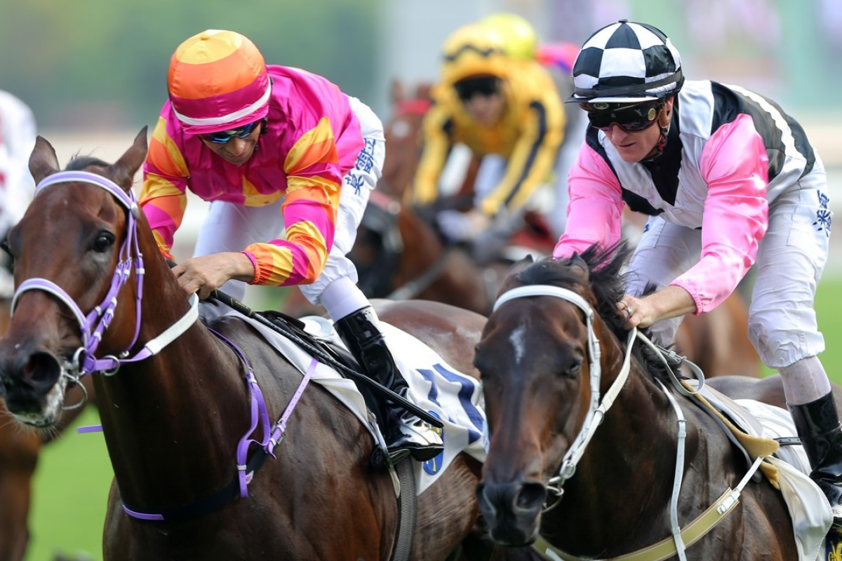 Joao Moreira and Top Beautiful edge out Zac Purton and Beauty Master. Photos: Kenneth Chan