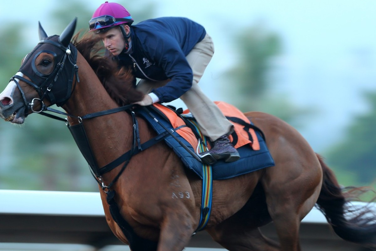 Tommy Berry partners Eagle Way in a gallop at Sha Tin on Thursday morning. Photos: Kenneth Chan
