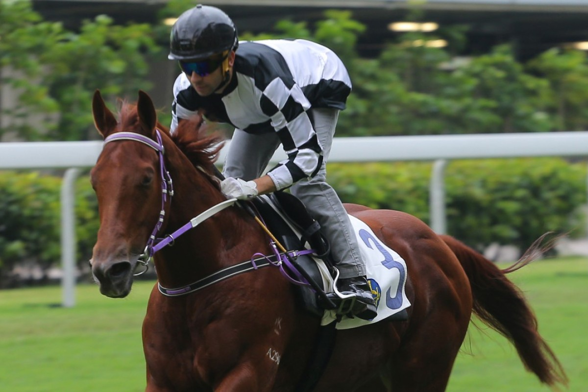 Joao Moreira rides Master Albert to a barrier trial victory at Happy Valley. Photo: Kenneth Chan