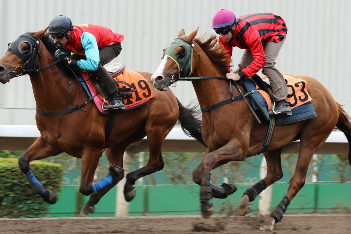Tommy Berry trials Eagle Way (right) at Sha Tin behind Righteous Mate at Sha Tin on Friday. Photos: Kenneth Chan