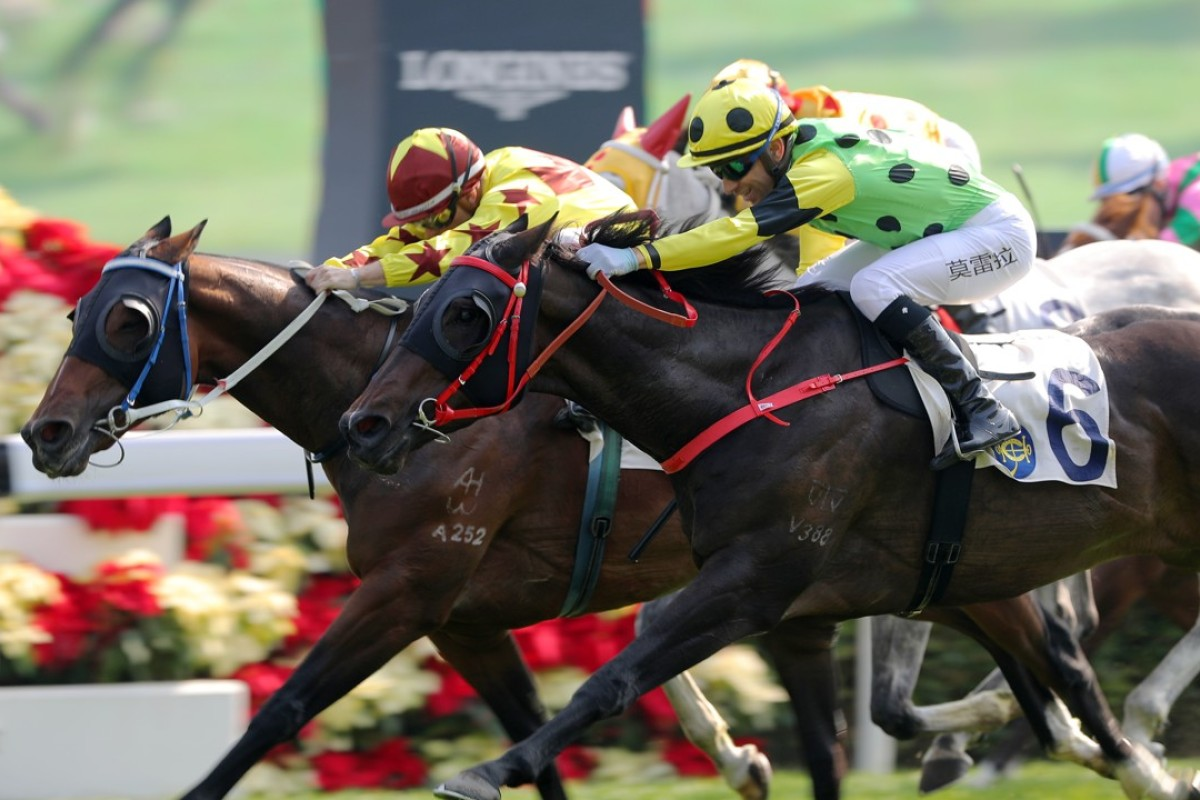 Southern Legend (left) knocks off $1.20 favourite Nothingilikemore. Photos: Kenneth Chan