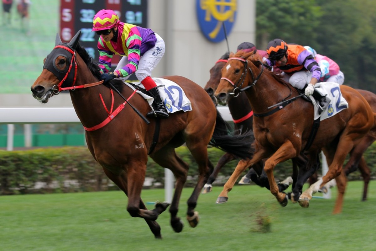 Alexis Badel guides Beaut Beaut to victory on Sunday. Photos: Kenneth Chan