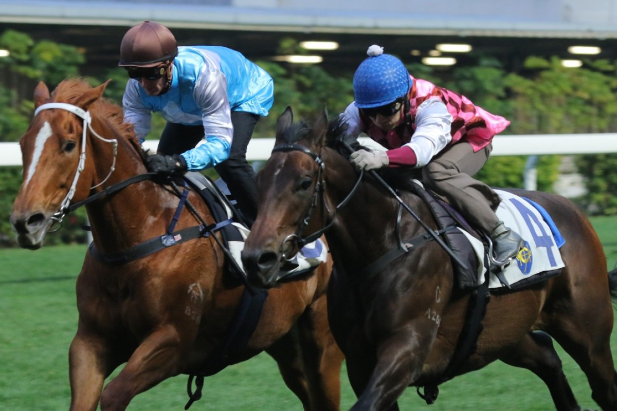 Famous Warrior left) finishes alongside Brave Legend in a Happy Valley barrier trial. Photo: Kenneth Chan