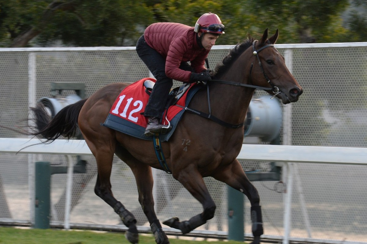 Easy Go Easy Win gallops for Tommy Berry at Sha Tin on February 8. Photos: Kenneth Chan.