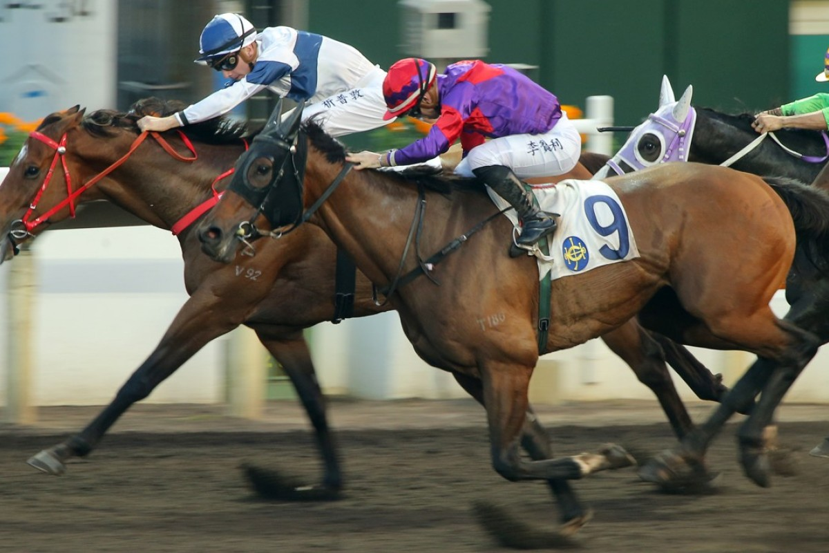 Fight Hero (middle) overhauls House Of Fun on the line (yes, really) to win on the all-weather track in December. Photo: Kenneth Chan