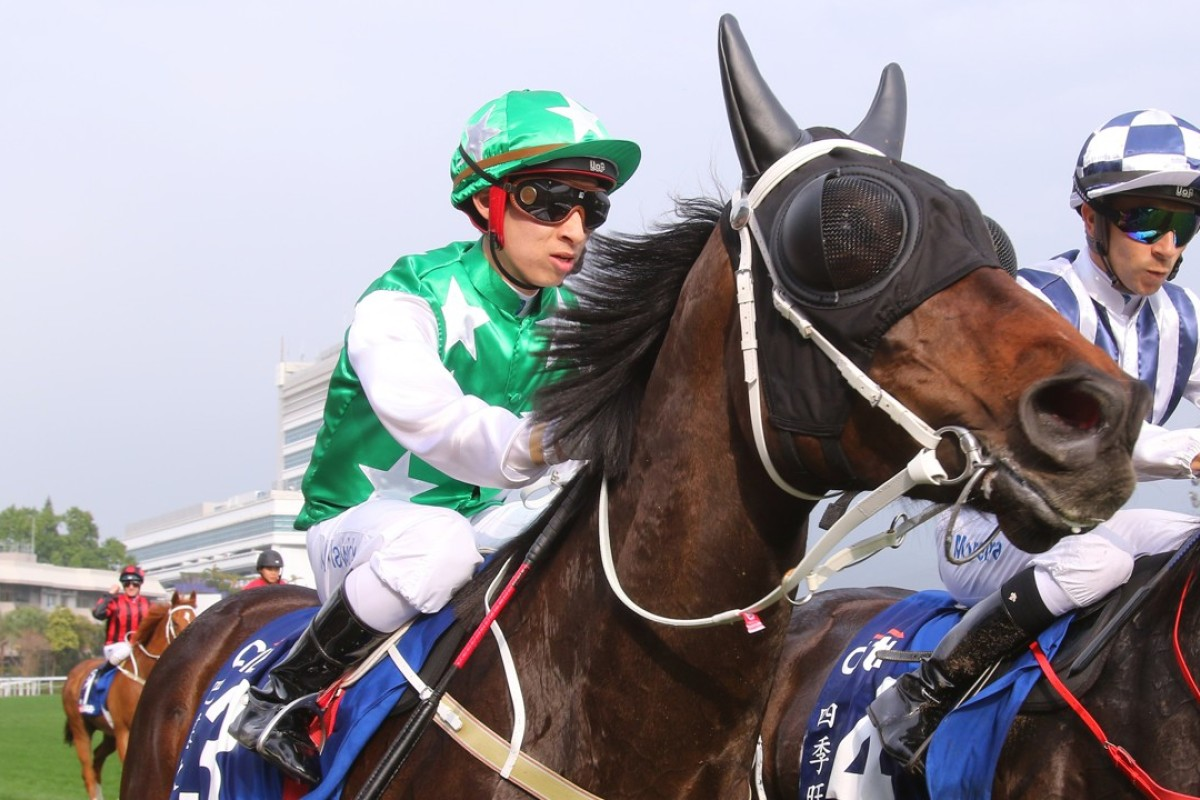 Pakistan Star returns to scale after racing in the Group One Citi Hong Kong Gold Cup on Sunday. Photos: Kenneth Chan