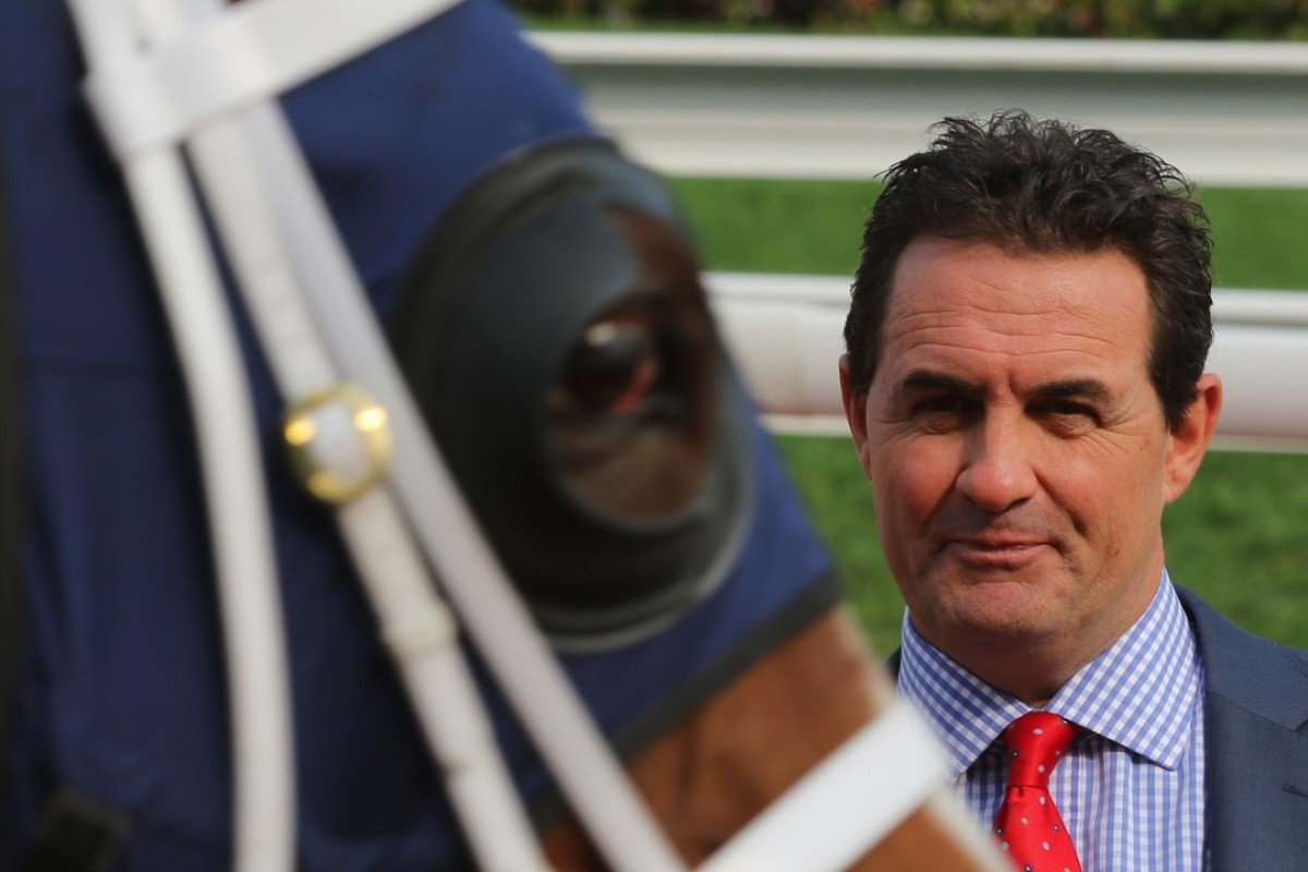 Michael Freedman after Elite Boy's big win at Sha Tin on Sunday. Photos: Kenneth Chan.