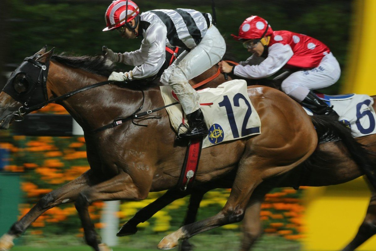 Matthew Chadwick and Acclaimed Light battle to the line to win the Sauternes Cup at Happy Valley. Photos: Kenneth CChan
