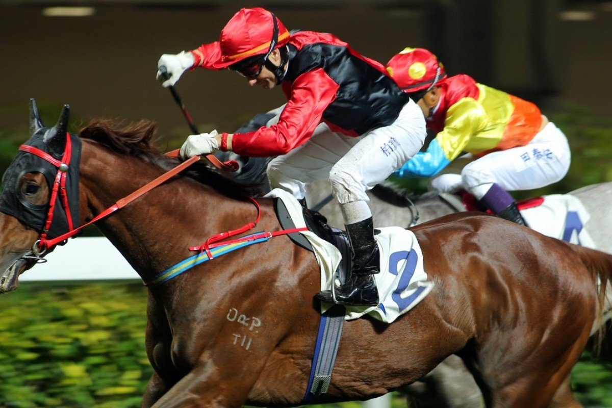 Brett Prebble drives Country Melody to victory at Happy Valley. Photos: Kenneth Chan