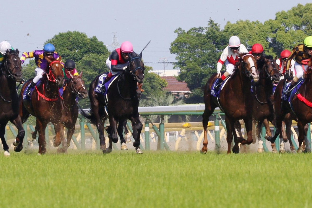 Western Express (left in purple colours) tries to keep up with Mozu Ascot (right) in the Yasuda Kinen. Photo: Kenneth Chan