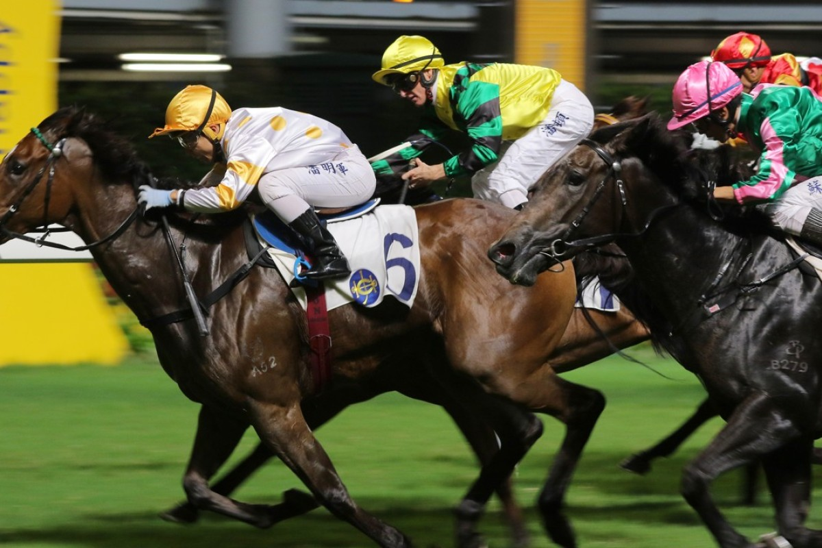 Bundle Of Energy (right) finishes third to Good Companion on Wednesday night. Photo: Kenneth Chan