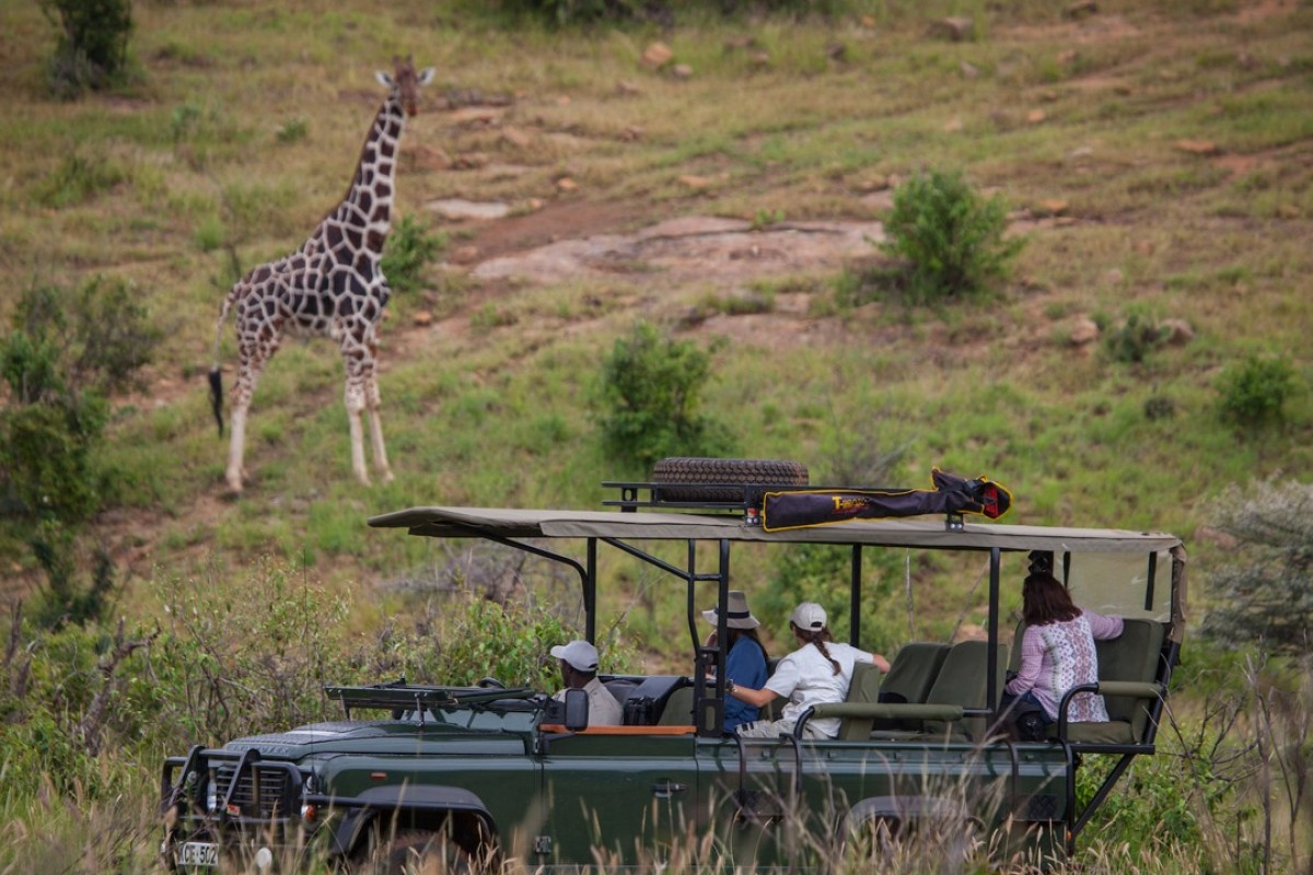 A game drive in the Loisaba Conservancy.