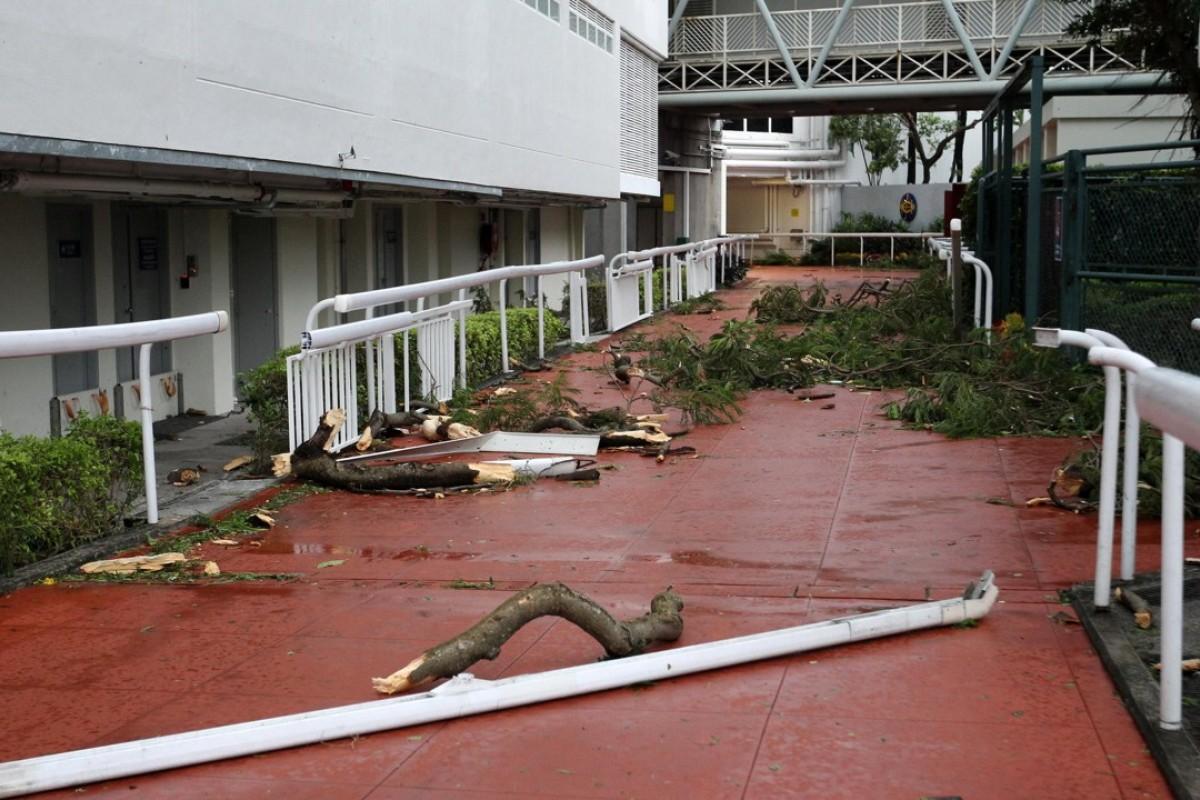 Sha Tin Racecourse after Typhoon Mangkhut. Photos: Kenneth Chan