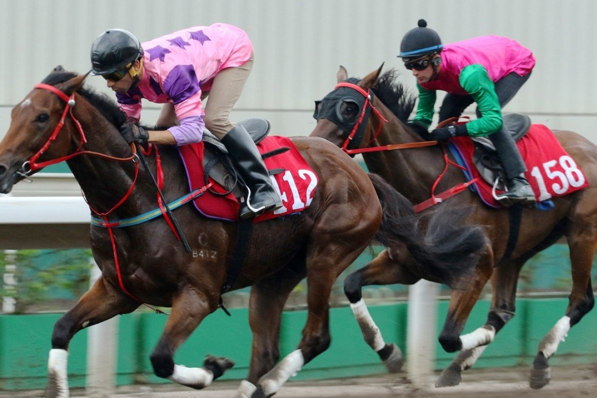 Mr So and So (left) is ridden by Joao Moreira during a trial at Sha Tin in July. Photos: Kenneth Chan.