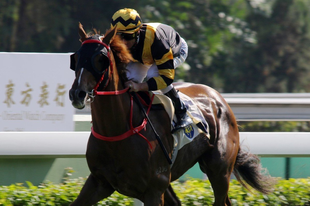 Glorious Forever wins again at Sha Tin on Sunday. Photos: Kenneth Chan