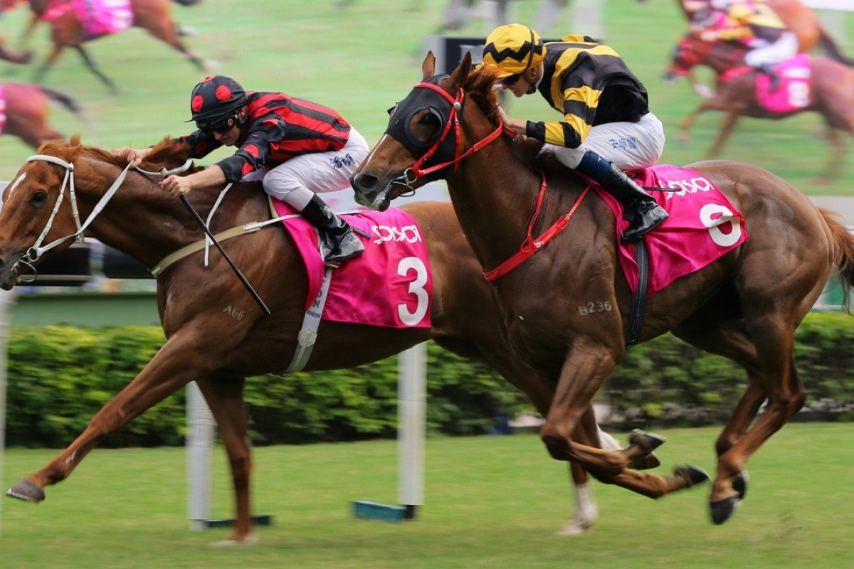 Time Warp beats home his brother Glorious Forever in the Group Three Sa Sa Ladies' Purse. Photos: Kenneth Chan