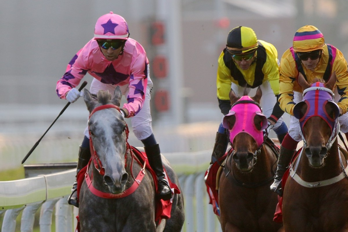 Hot King Prawn (left) wins the Jockey Club Sprint last month. Photos: Kenneth Chan