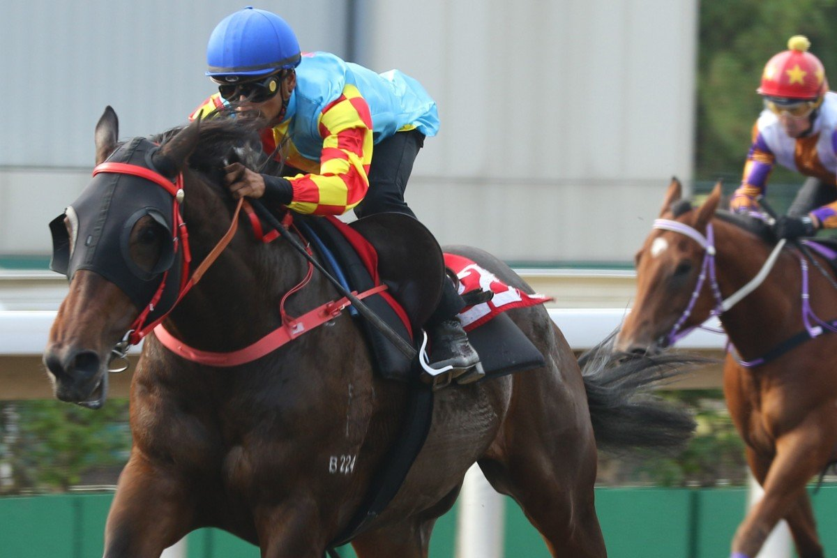 Karis Teetan clears out on Mission Tycoon in a recent barrier trial. Photos: Kenneth Chan