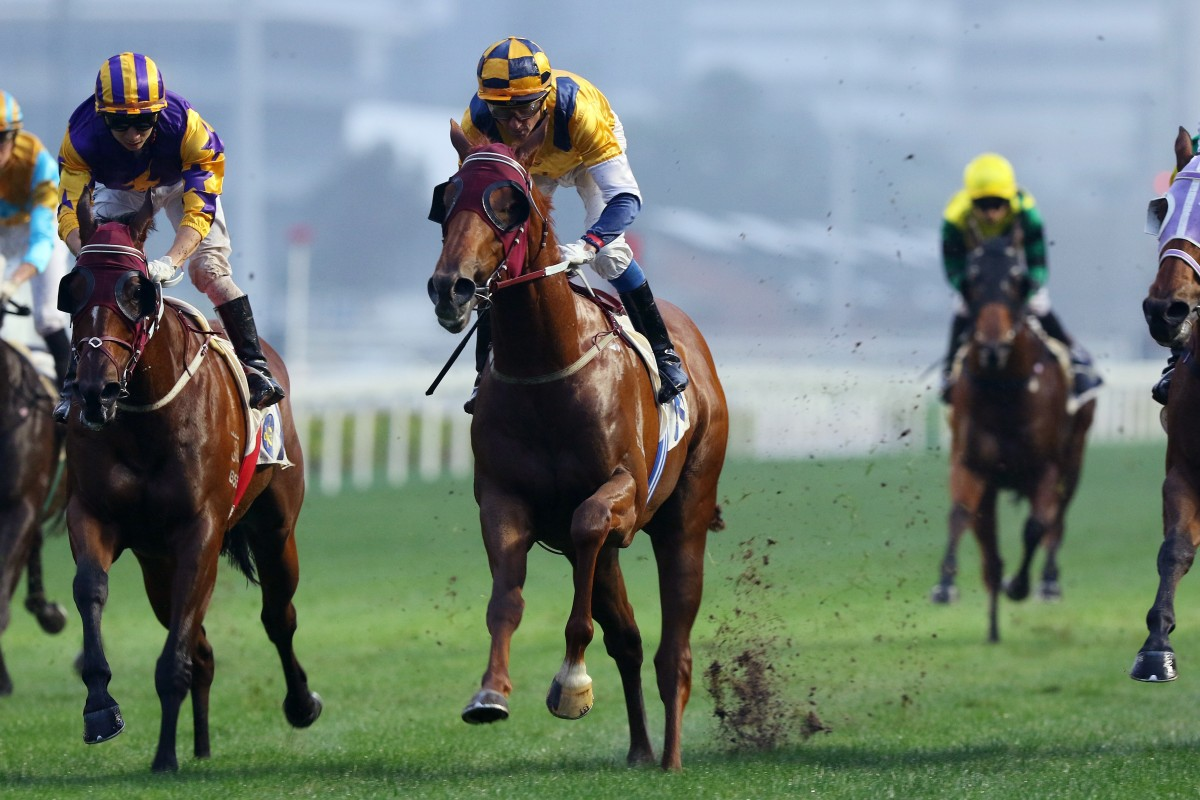 Douglas Whyte lifts Styling City to victory at Sha Tin on Sunday. Photos: Kenneth Chan