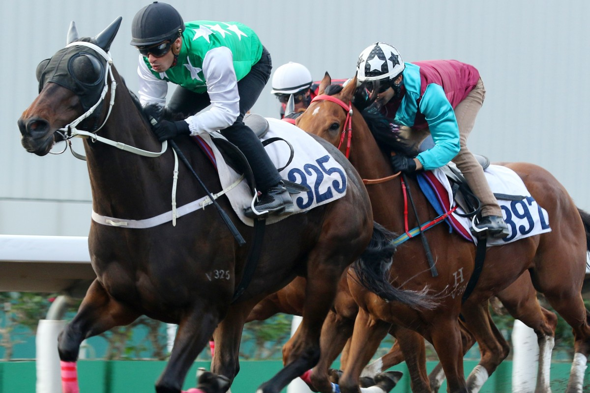 Pakistan Star sprints down the Sha Tin all-weather track to win a trial on Friday morning. Photos: Kenneth Chan