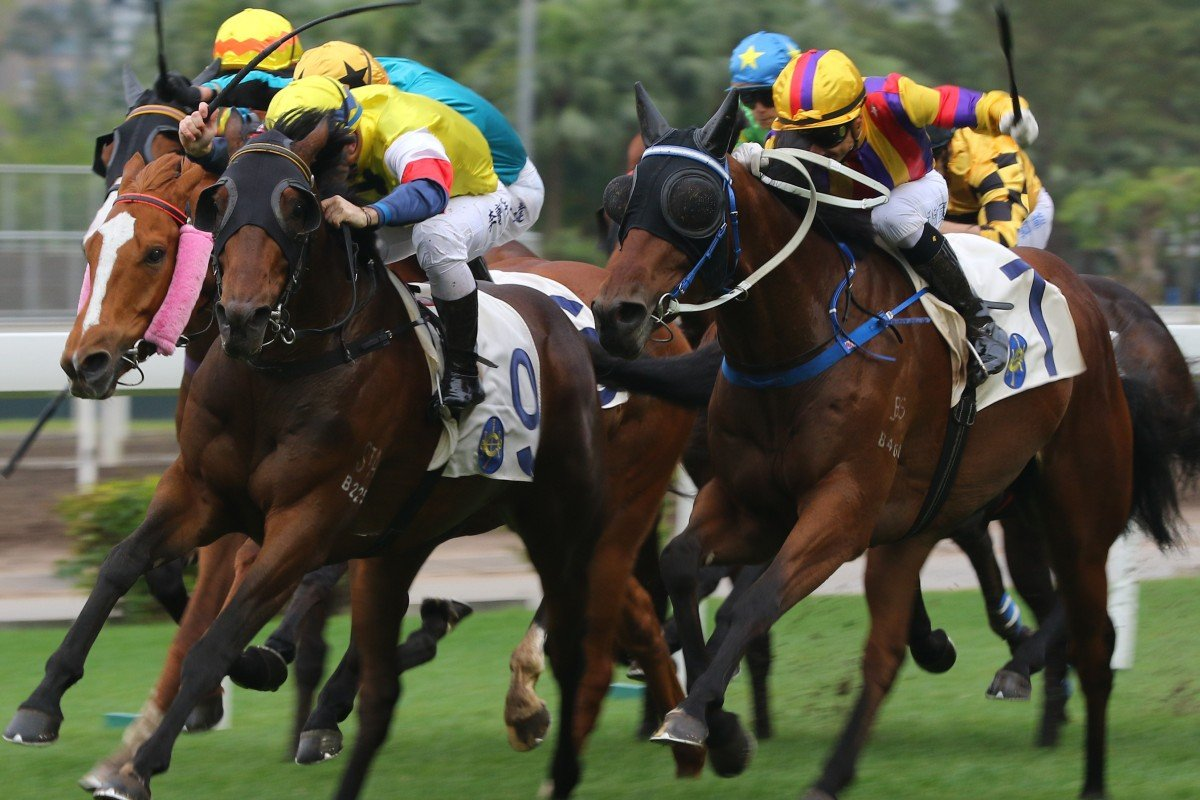 Horse racing in Hong Kong is a big business with the non-profit Jockey Club returning about 80 per cent of its surplus to society through tax and charity. Photo: Kenneth Chan