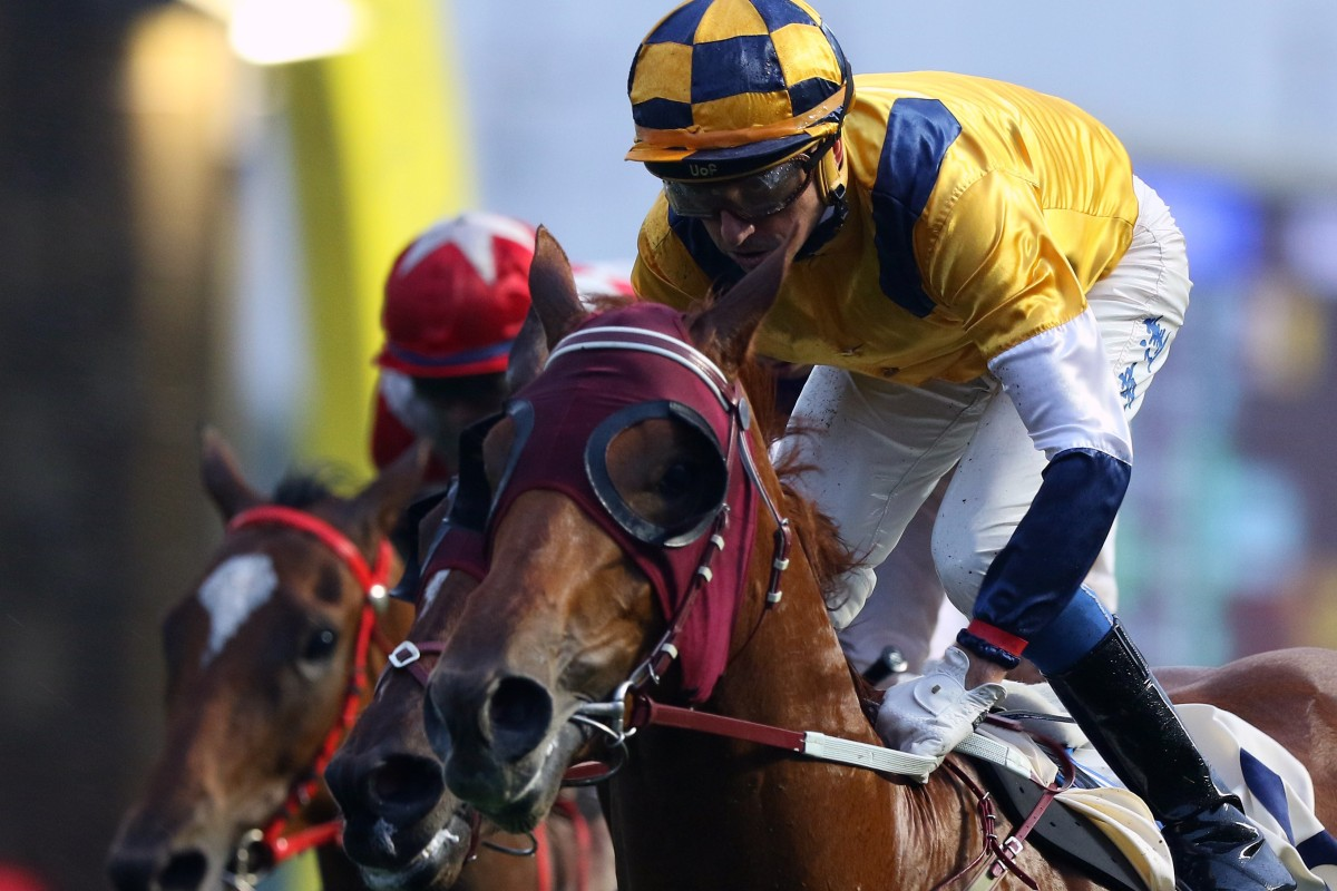 Douglas Whyte wins on Styling City in December at Sha Tin. Photos: Kenneth Chan