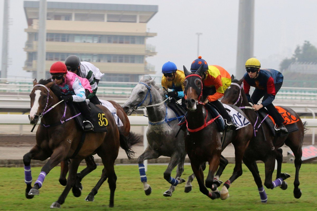 Horses trial at the Conghua Training Centre in October. Photo: Kenneth Chan