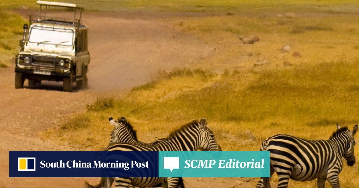 The good, bad and ugly sides to African safaris | South China