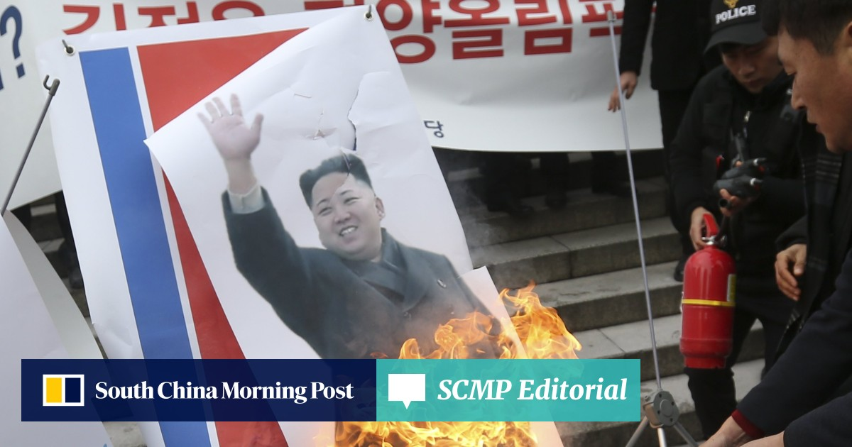 Protesters burn pictures of Kim Jong-un as North Korean girl