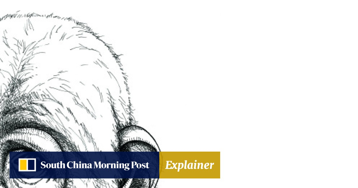 Rich mum, poor mum | South China Morning Post