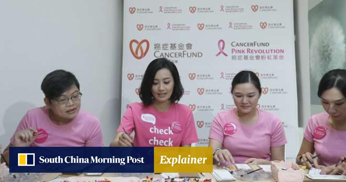 e423423dd6b Why Hong Kong actress Fala Chen went back to school | South China Morning  Post
