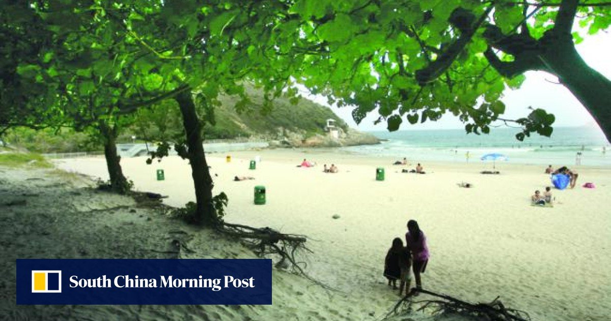 Poison suspected of killing four dogs at Big Wave Bay, Shek O