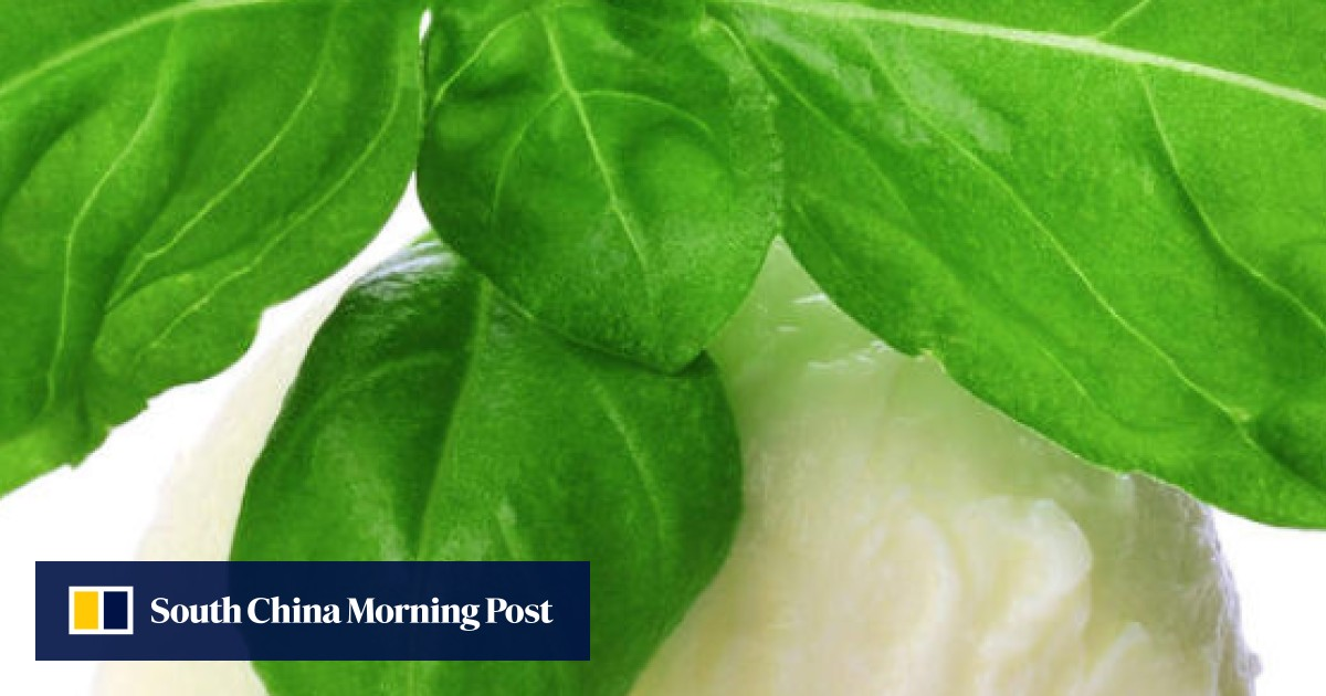 3e14d9ee167 Basil world: cooking with different types of basil | South China Morning  Post