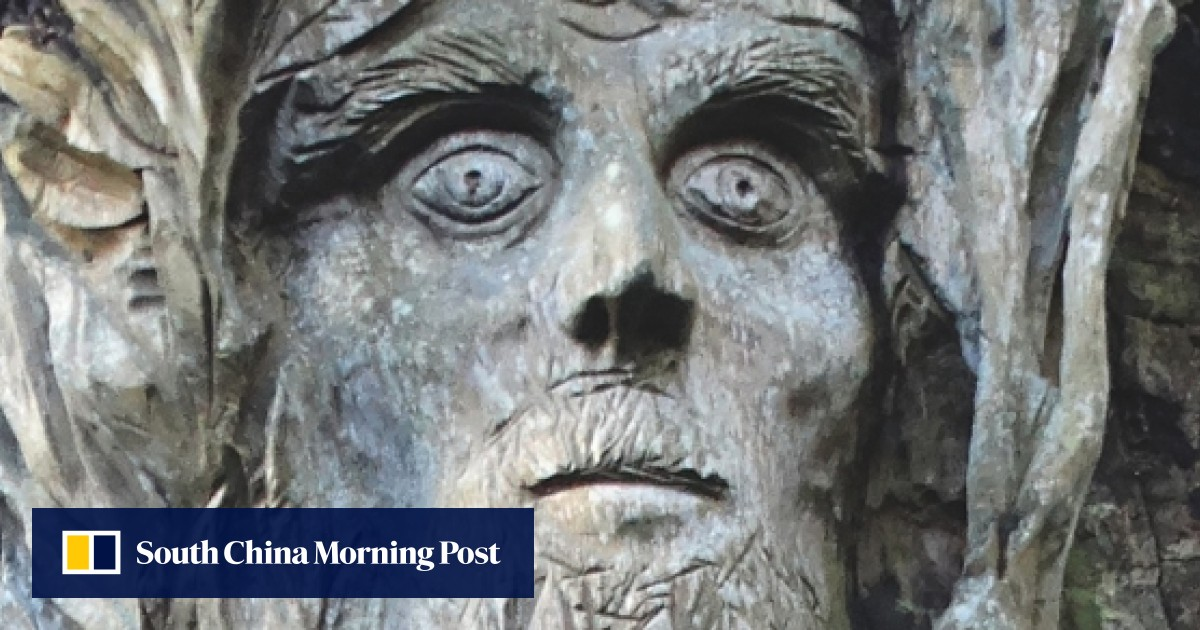 991bf684692 Book review: Thomas Pakenham's lyrical chronicle of a year spent planting  and pursuing trees is a delight | South China Morning Post
