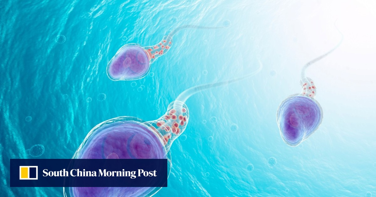 How to increase your sperm count and keep it up: lots of great sex, cold baths and garlic | South China Morning Post