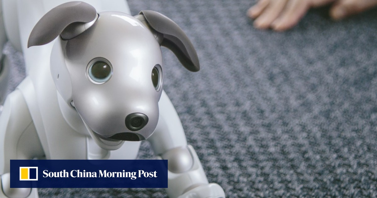 The truth about robot cats and dogs: can they replace real pets?