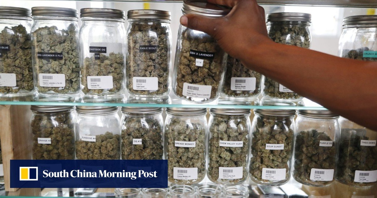 Global cannabis industry eyes China for production and