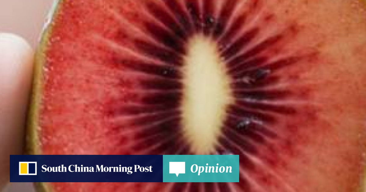 Red kiwifruit about two years away from commercial