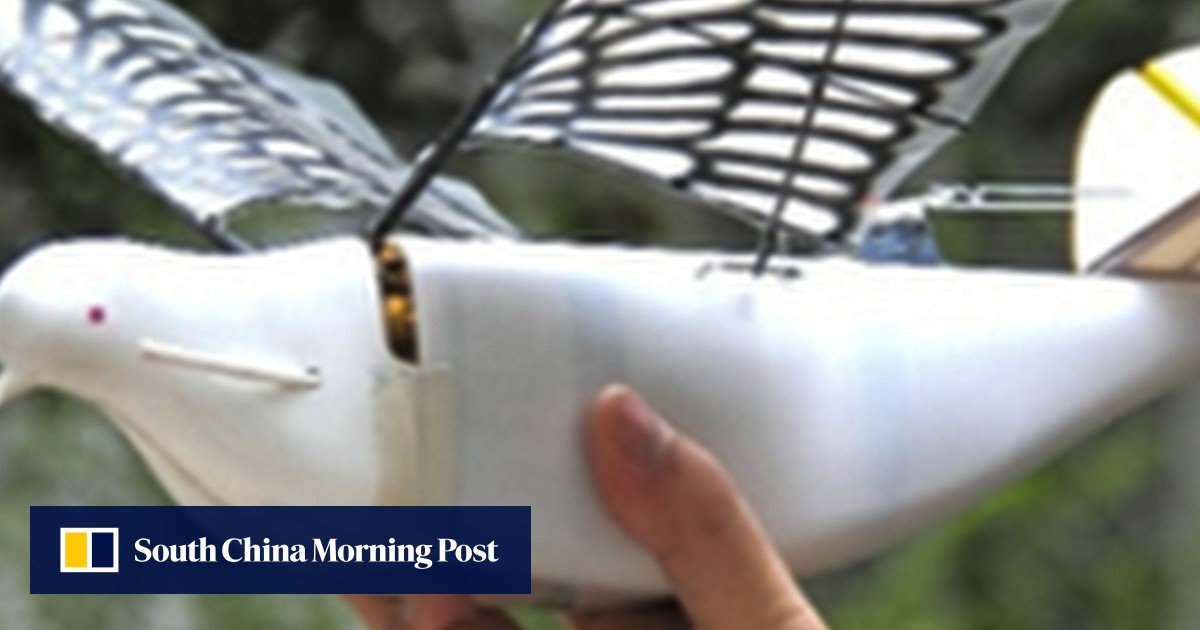 China takes surveillance to new heights with flock of robotic Doves