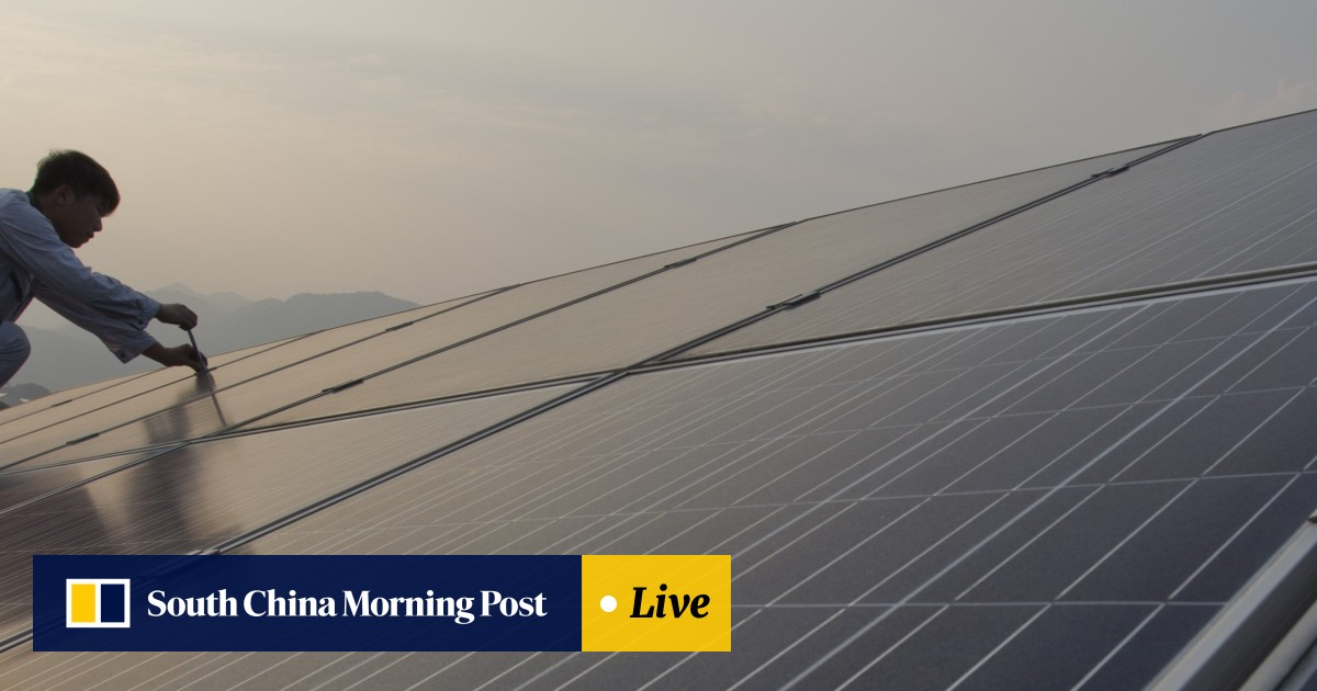 Chinese solar panel makers urge government to delay subsidy