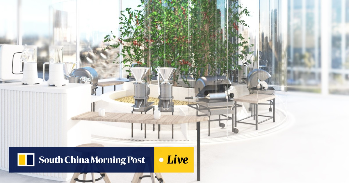 d8dded060e2e8 Grow and brew your own coffee at home for HK$24.5 million | South ...