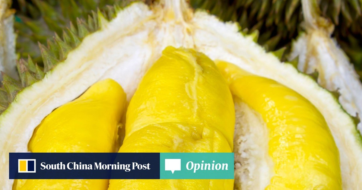 Durians are dirt cheap in Malaysia right now thanks to a