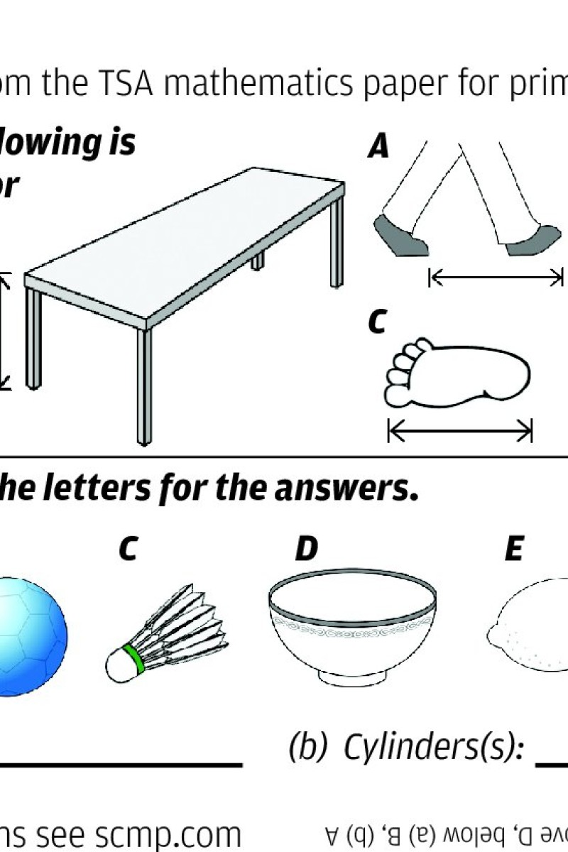 Can you answer this Hong Kong Primary Three maths test? | South