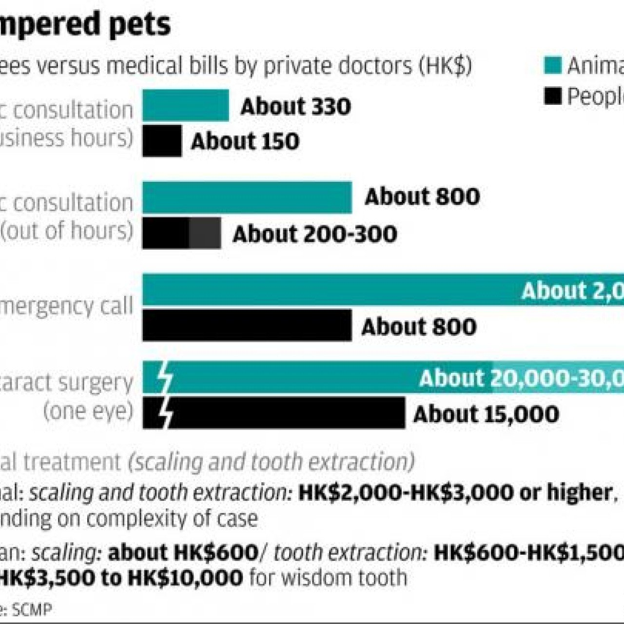 How can a dog operation cost more than human surgery? asks top