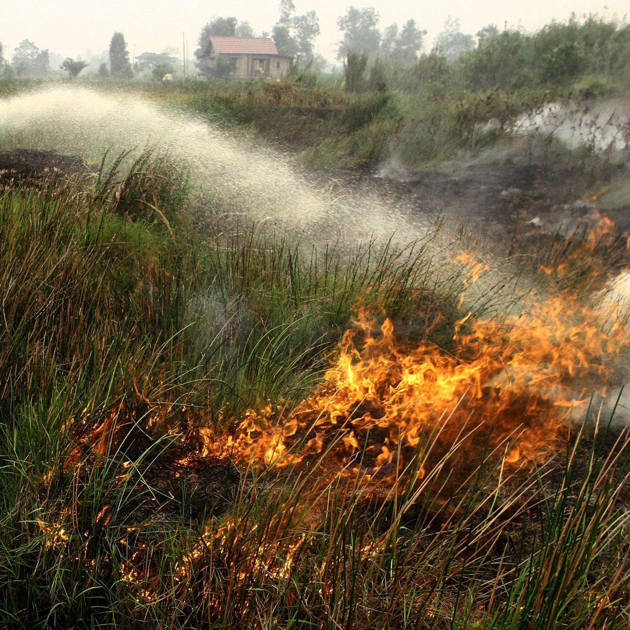 Indonesia accepts international help to combat fires that have sent