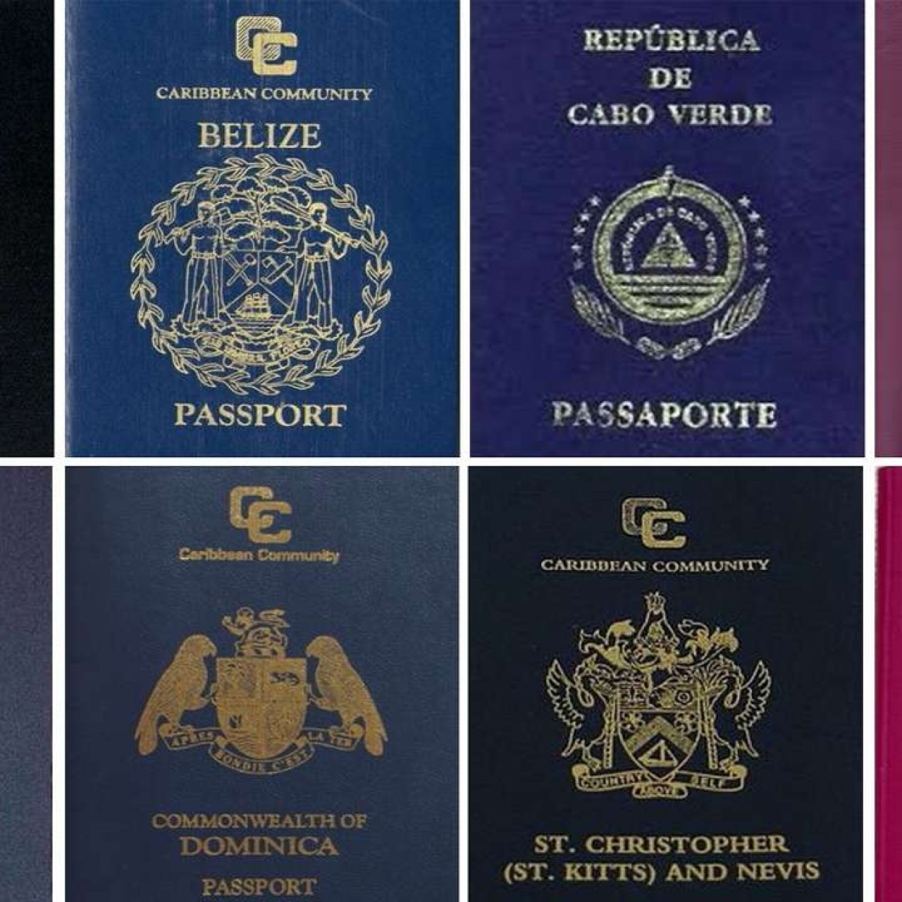 The case of the Canadian with eight citizenships, and why