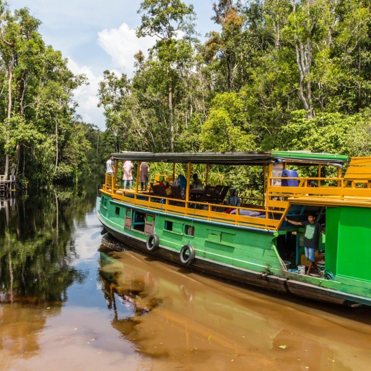 Five of the best Borneo river trips to see its nature and