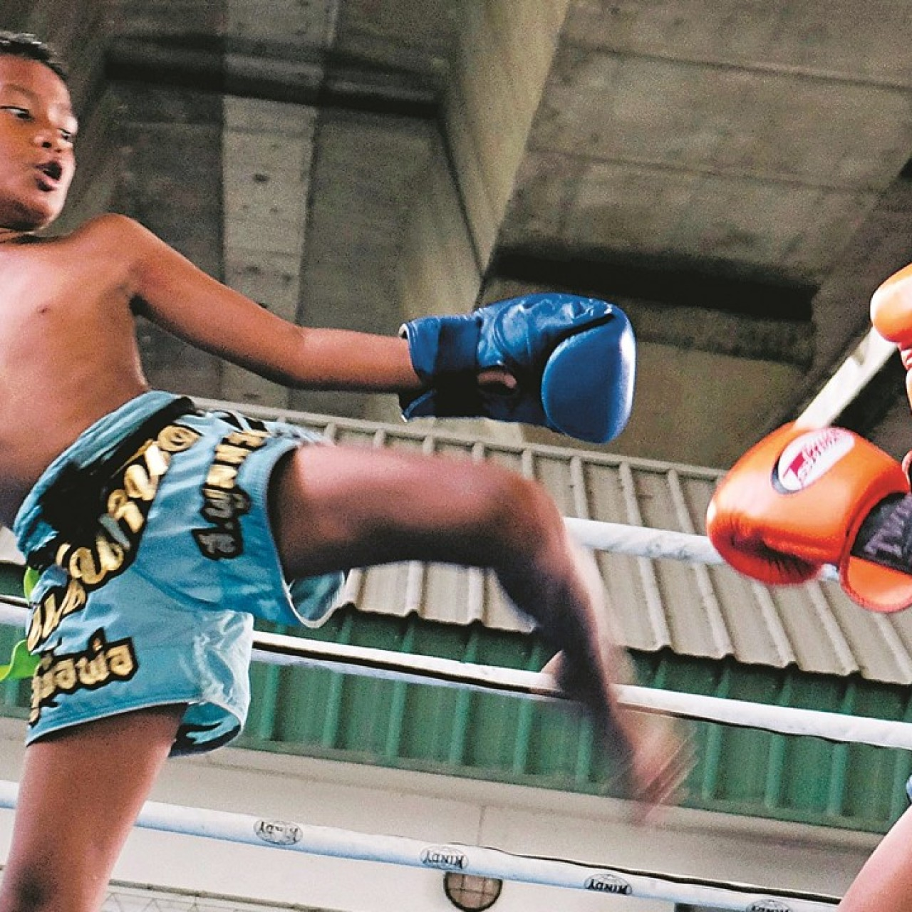 Muay Thai child fighters put their health on the line for gamblers